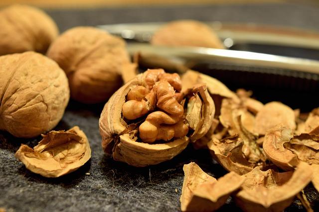 walnuts-932080_640